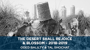 The Desert Shall Rejoice & Blossom - Oded Balilty